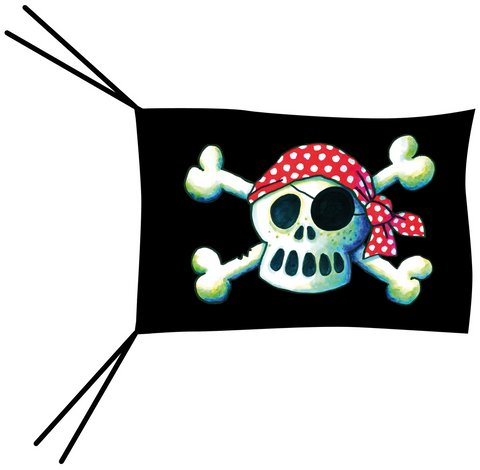 Pirate Flag with Stick